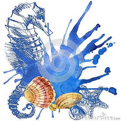 Free Seashell Background Stock Images - 54112714