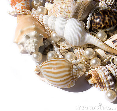 Free Seashell With Pearls Royalty Free Stock Photo - 10723345