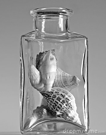 Free Seashells In A Glass Jar Royalty Free Stock Images - 8915809
