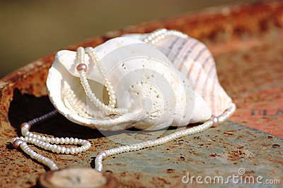 Seashells and Pearls 2