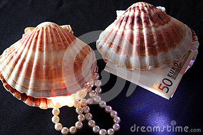 Seashells with pearls and money