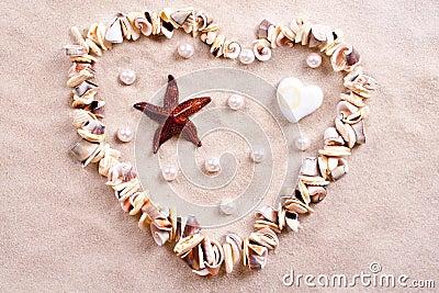 Seashells in sand