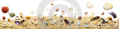 Seashells and sand border