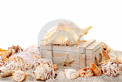 Seashells and treasure chest