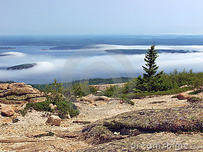 Seashore of Acadia National Park