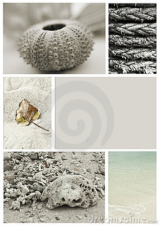 Seashore collage