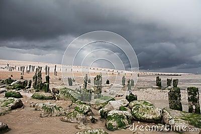 Seaside beach storm coast