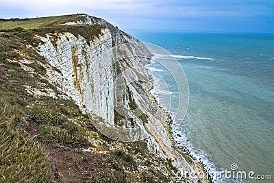 Seaside cliffs. Beautiful landscape in the summer.