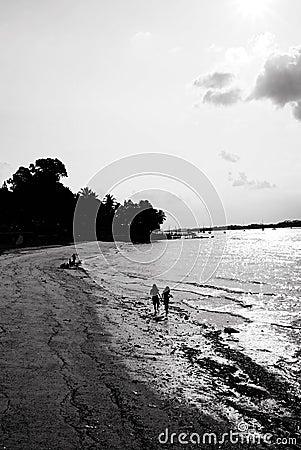 Seaside Combing