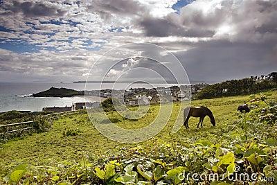 Seaside landscape in Cornwall