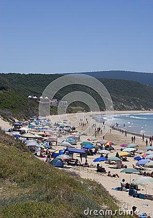 A seaside scene