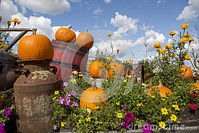 Seasonal garden decorations