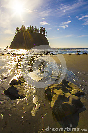 Seastack Sanctuary at Low Tide Second Beach Olympic National Park