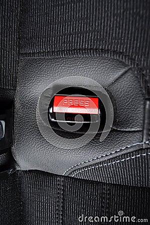 Free Seat Belt Royalty Free Stock Photos - 15703998