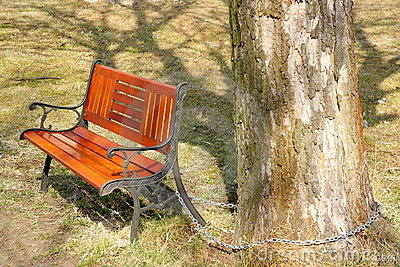 Seat in park