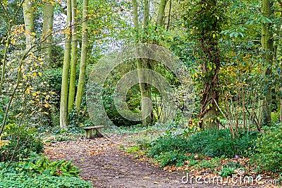 essex woodland uk