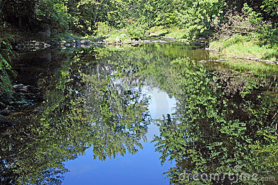 Secluded river with reflections