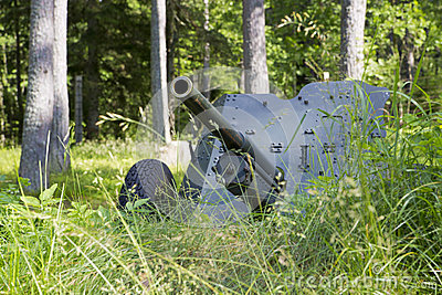 Second world war cannon hiding in grass