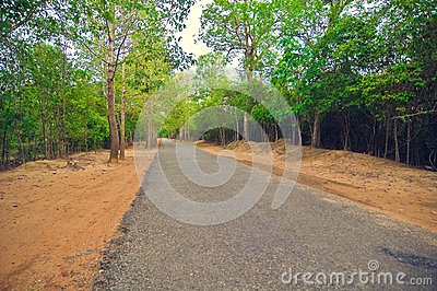 Secondary road path from Angkor`s temple.Cambodia