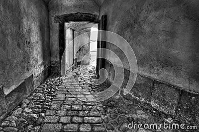 Secret passage.