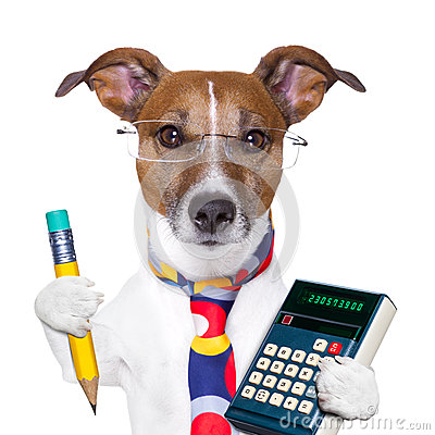 Free Secretary Dog Stock Photography - 28880212