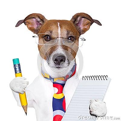 Free Secretary Dog Stock Images - 28880214