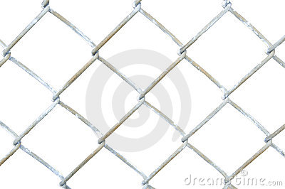 Section of Chain Link Fence