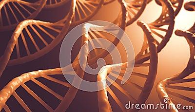 Secuencia de la DNA