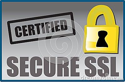 Secure SSL logo