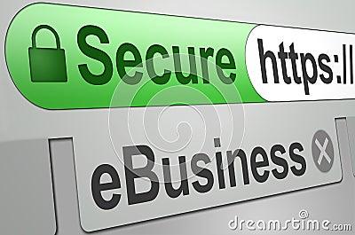 Secure web business transaction