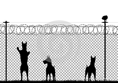 Wire Fence Art