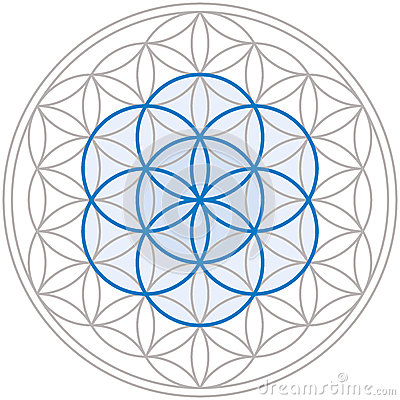 Free Seed Of Life In Flower Of Life Royalty Free Stock Photo - 40086225