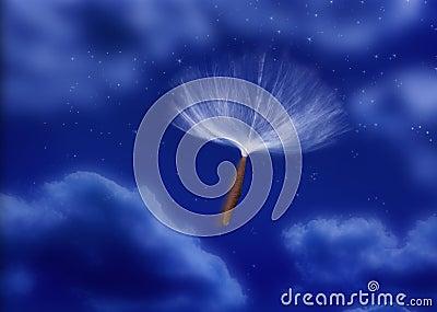 Seed Parachute Pod Wind
