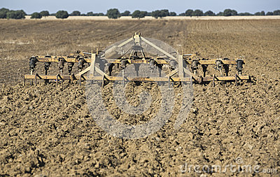 Seedbed cultivator-harrow