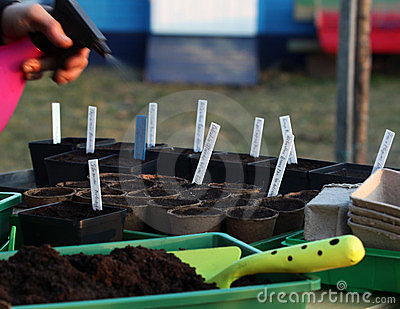 Seeding humidify