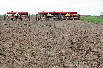 Seeding machines at field