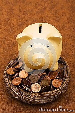 Seeing Your Savings