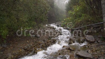 Seething clean clear mountain river waterfall flowing slow motion stock footage
