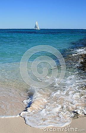 Segel-Boot im tropischen Wasser