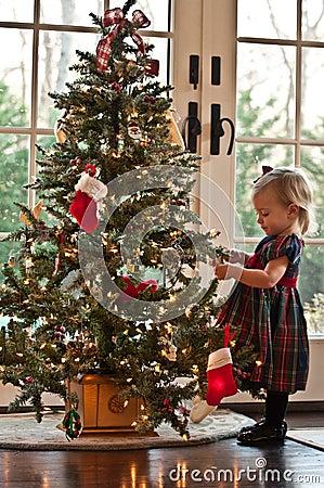 Segurando a árvore de Natal