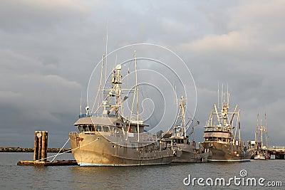 Seine Fish Boats Wait