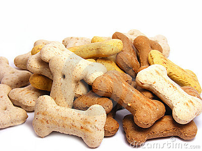 Selection of mini dog biscuit bones