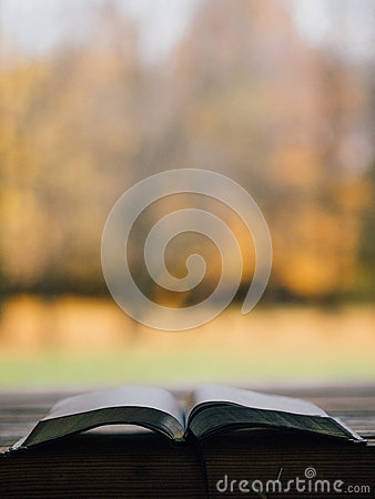 Selective Focus Of Opened Book Free Public Domain Cc0 Image