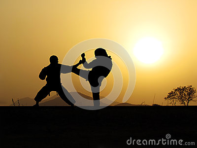 Self defense martial arts training