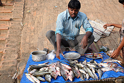 Selling a fish on fish market Editorial Stock Image