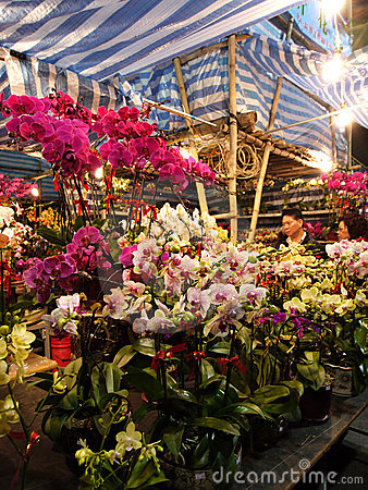 Selling flowers during Chinese Lunar New Year Editorial Stock Image
