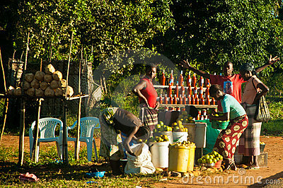 Selling food in the Mozambican national road Editorial Photography