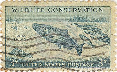 Sello de la conservación de la fauna