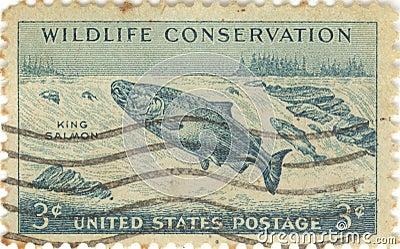 Selo da conservação dos animais selvagens