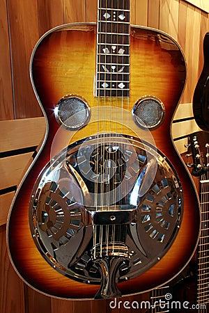 Semi-acoustic guitar